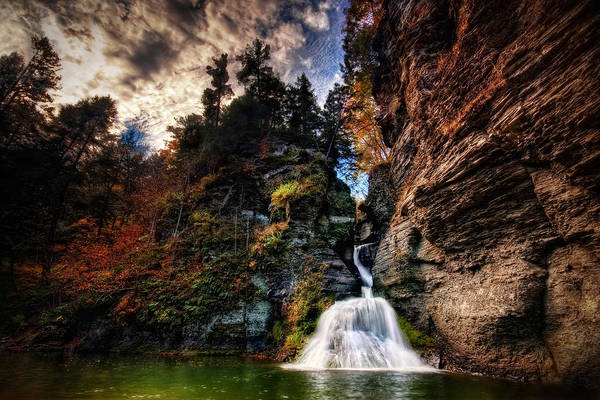 Mine Kill State Park Art Print featuring the photograph Laurelindorinan by Neil Shapiro
