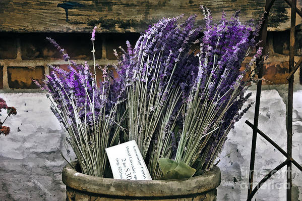 Flower Art Print featuring the painting Lavender For Sale by Elaine Manley