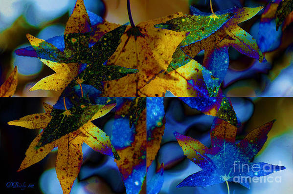 Leaf Art Print featuring the photograph Leaf Peeping by Donna Bentley