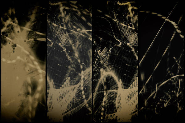Prints And Posters Art Print featuring the photograph Lightpainting Quads Art Print Photograph 4 by John Williams