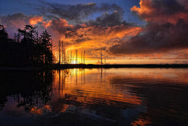 Sunset Art Print featuring the photograph Listen To The Silence by Randall Scholten