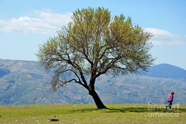 Alpujarra Art Print featuring the photograph Little Girl Walking Past A Tree In Springtime by Sami Sarkis