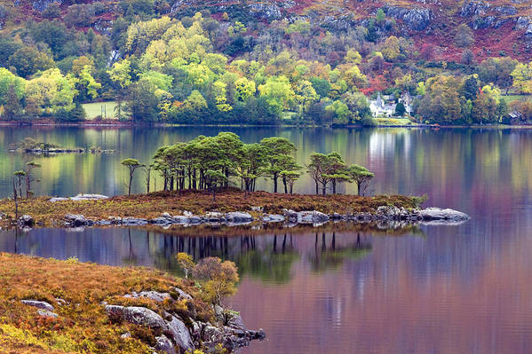 Scotland Art Print featuring the photograph Loch Maree In Autumn by John McKinlay