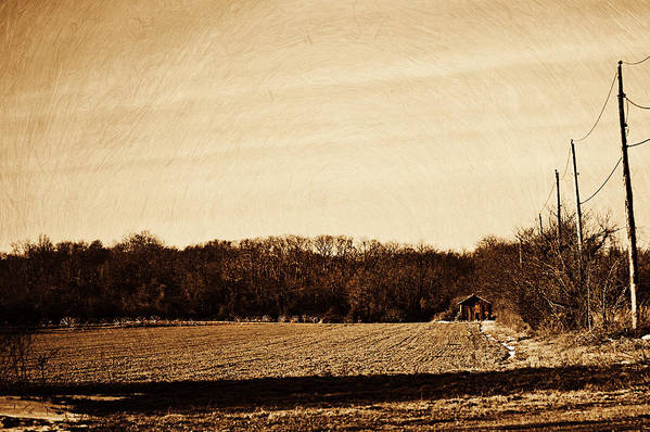 Landscape Art Print featuring the photograph Lonely Old Barn by Susan Eckert