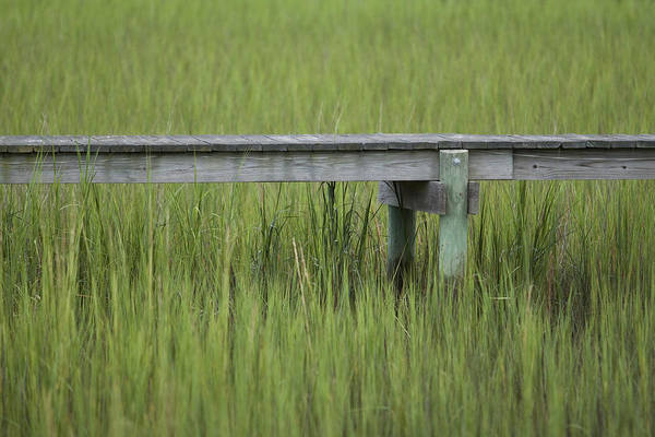 Lowcountry Art Print featuring the photograph Lowcountry Dock Over Marsh Grass by Dustin K Ryan
