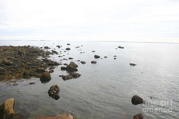 Landscape Art Print featuring the photograph Maine Bay by Dennis Curry