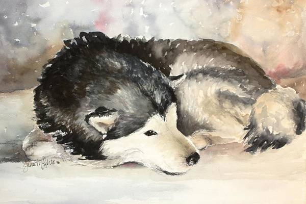 Dog Art Print featuring the painting Malamute At Rest by Janae Lehto