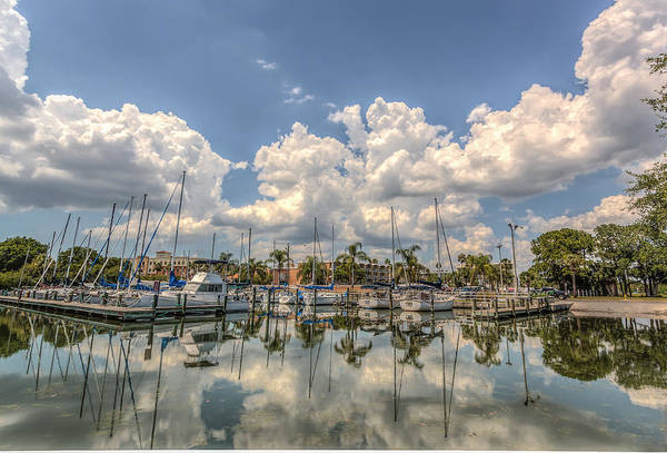 Florida Art Print featuring the photograph Marina Reflections by Jane Luxton