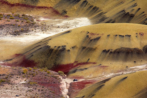 The Strange Stains And Markings On The Painted Hills National Monument In Oregon Art Print featuring the photograph Marked Hills by Mike Dawson