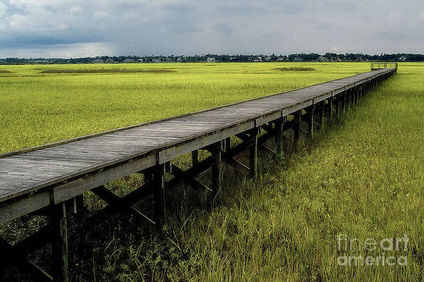 Marsh Art Print featuring the photograph Marshland Boardwalk by Neil Doren