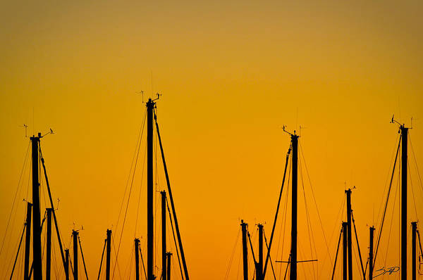 Boat Art Print featuring the photograph Masts by Spadafora Photography