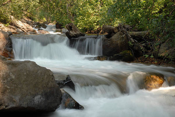 Cascade Art Print featuring the photograph Middle Provo River Cascade by Dennis Hammer