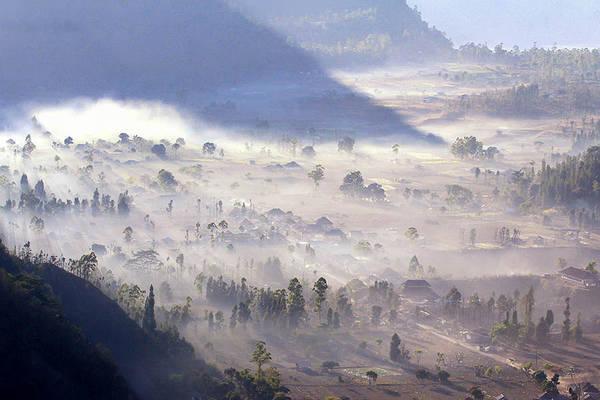 Landscape Fog Morning Art Print featuring the photograph Misty Morning by Gusti putu Suarsana