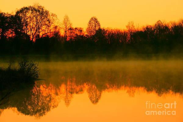 Golden Sunrise Art Print featuring the photograph Misty Sunrise by Morgan Hill