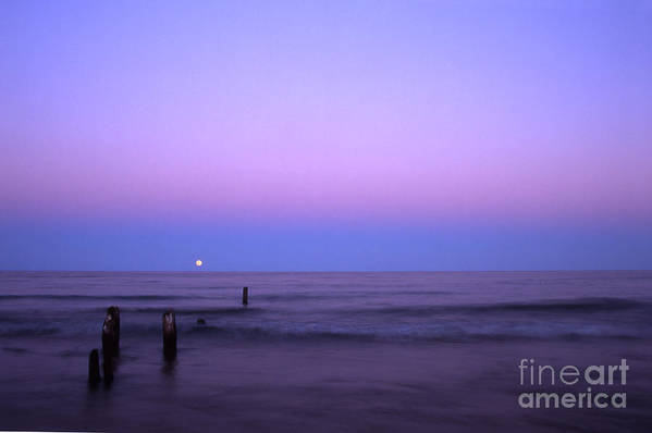 Moon Art Print featuring the photograph Moonrise by Timothy Johnson