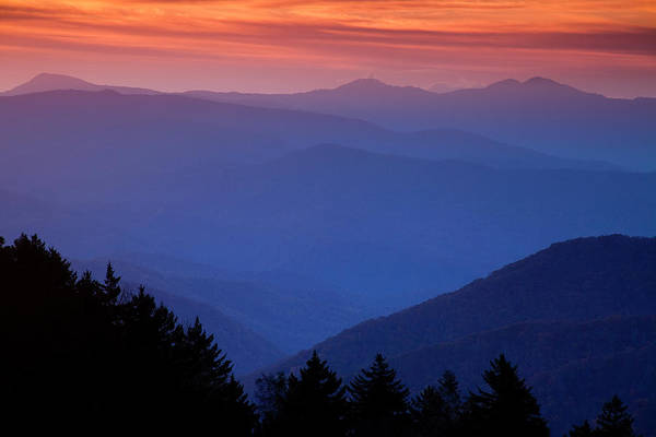 Smokies Art Print featuring the photograph Morning Colors In The Smokies by Andrew Soundarajan