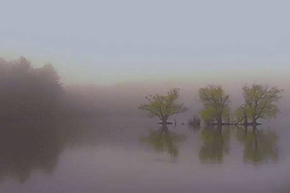 Horn Pond Art Print featuring the photograph Morning Fog by Jeff Heimlich