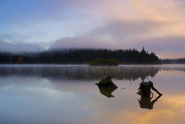 Fog Art Print featuring the photograph Morning Mist Burning by Mike Dawson