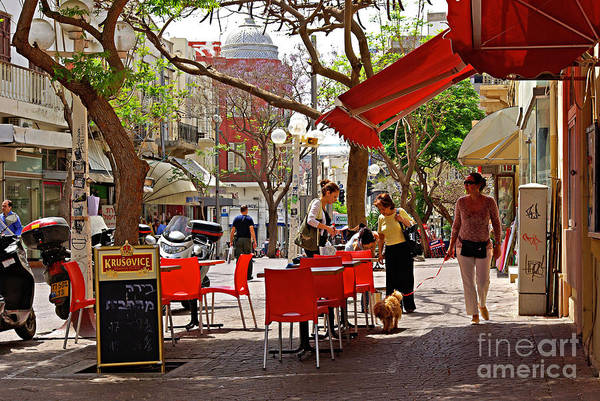 Morning Art Print featuring the photograph Morning On A Street In Tel Aviv by Zalman Latzkovich