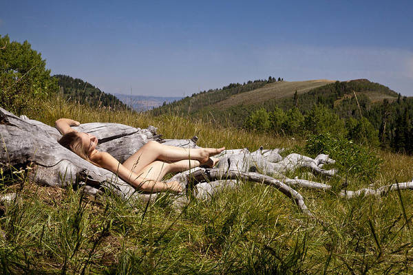 Nude Art Print featuring the photograph Mountain Meadow I by David Schroeder