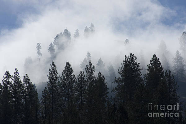 Fog Art Print featuring the photograph Mountain Mist by Idaho Scenic Images Linda Lantzy