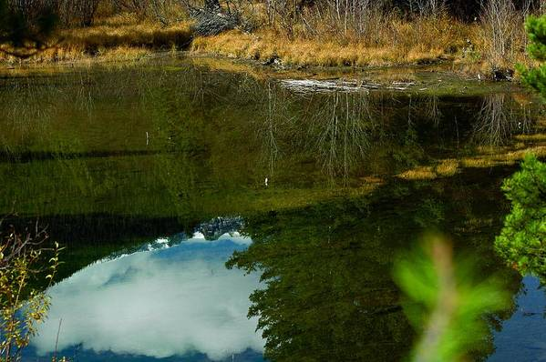 Photo Art Print featuring the photograph Mountain Reflections by Julie Clements