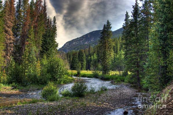 Landscape Art Print featuring the photograph Mountain Stream 4 by Pete Hellmann