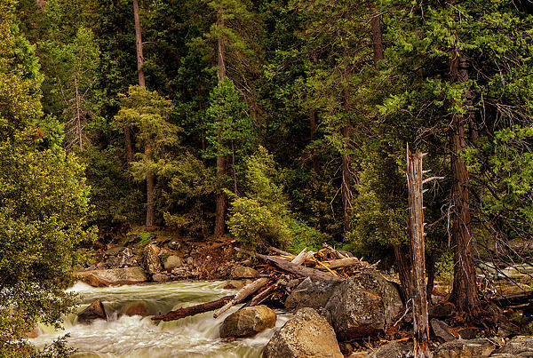 River Print featuring the photograph Mountain Stream by Andrew Soundarajan