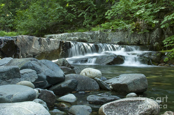 Stream Art Print featuring the photograph Mountain Stream by Idaho Scenic Images Linda Lantzy
