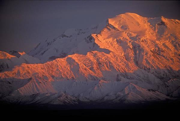 Denali National Park Art Print featuring the photograph Mt. Mckinley Sunset by Sandra Bronstein