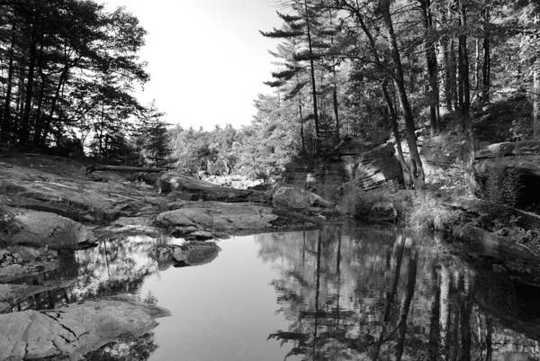 Lake Rocks Landscape Pine Canada Art Print featuring the photograph Muskoka Country II by Andriy Zolotoiy