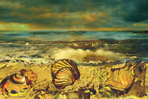 Mussels Art Print featuring the painting Mussels On The Beach by Anne Weirich