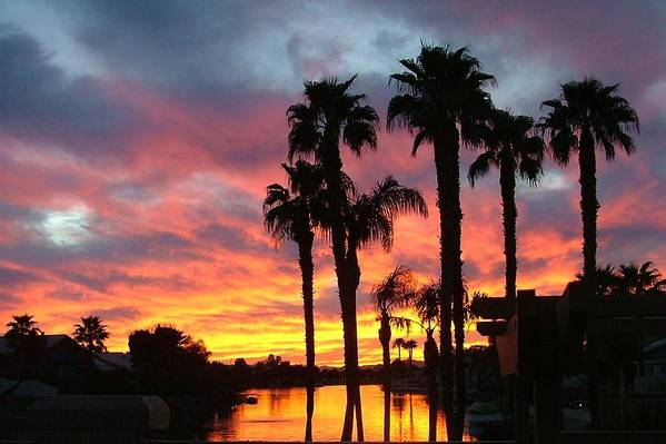 Sunset At The Islands Art Print featuring the photograph My Backyard by Dan Hausel