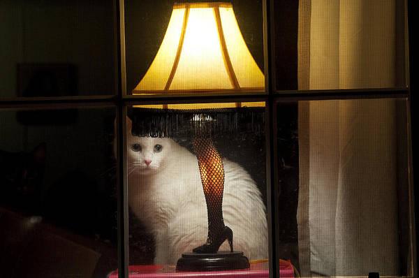 Leg Lamp Art Print featuring the photograph My Major Award by Kenneth Albin