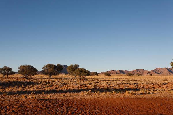 Kalahari Art Print featuring the photograph Namibia by Davide Guidolin