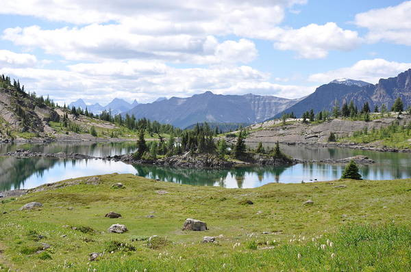 Rocky Mountains Art Print featuring the photograph Natures Glasswork by Greg McDonald