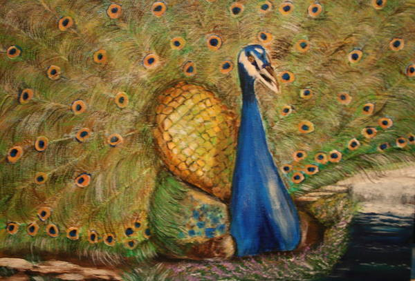 Peacock Art Print featuring the painting Nbc Pride by Dyanne Parker