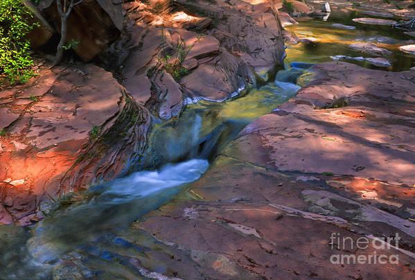 Southwest Art Print featuring the photograph Oak Creek Canyon Splendor by Sandra Bronstein