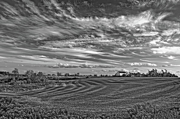 Landscape Art Print featuring the photograph October Patterns Bw by Steve Harrington
