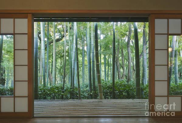 Mood Print featuring the photograph Okochi Sanso Villa Bamboo Garden by Rob Tilley