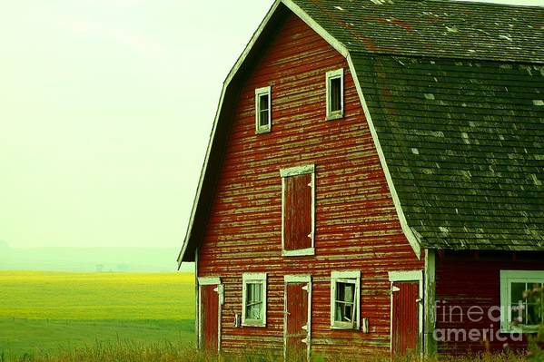 Old Barn Art Print featuring the photograph Old Barn by Mario Brenes Simon