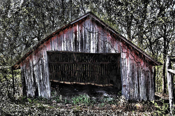 Dave Art Print featuring the photograph Old Dave's Front Barn by Dennis Sullivan