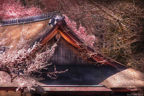 Savad Art Print featuring the photograph Orient - Shofuso House by Mike Savad