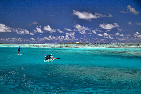 Moorea Art Print featuring the photograph Paddling In Moorea by David Smith