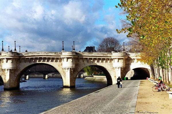 Paris Art Print featuring the photograph Paris Bridge 0523 by PhotohogDesigns