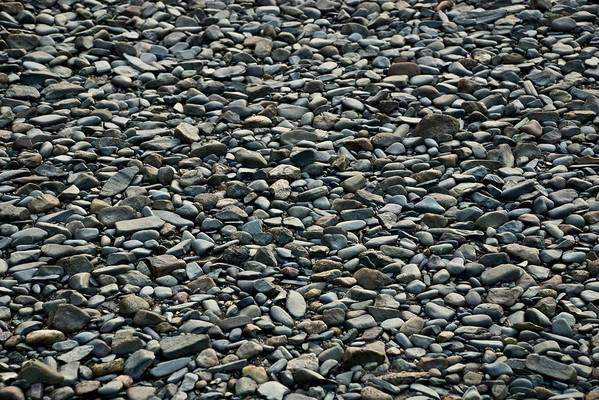 Pebbles Art Print featuring the photograph Pebbles On The Beach by Gene Sizemore