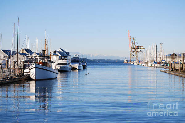 Olympia Art Print featuring the photograph Percival Landing by Larry Keahey