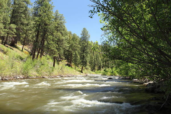 Colorado Art Print featuring the photograph Piedra River by Eric Glaser