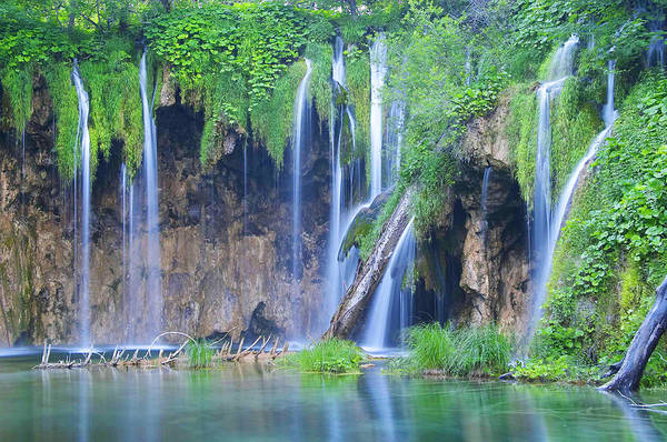 Plitvice Art Print featuring the photograph Plitvice by Elisa Locci