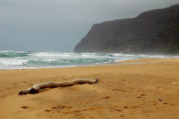 Beach Art Print featuring the photograph Polihale State Park by Kathy Schumann